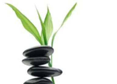 Energy Medicine Programs