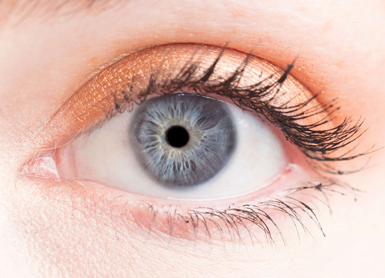 Iridology and Sclerology Programs